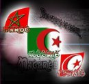 Photo de maghreb-united-3